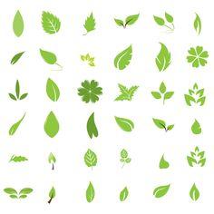 Vector pack: Hojas verdes | Diseño, ilustraciones vectoriales y recursos gratis