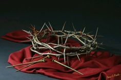 The crown of thorns He wore for us, as He died in our place.