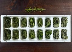 Freeze & Preserve Fresh Herbs in Olive Oil — Tips from The Kitchn Freezing Fresh Herbs, Preserve Fresh Herbs, Freezer Cooking, Fun Cooking, Olives, Sardine Recipes, Garden Gadgets, Bountiful Harvest, Strawberry Puree