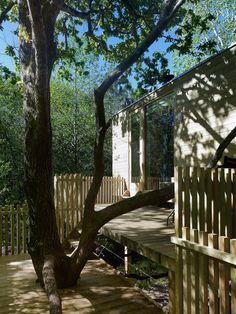 Respetando el entorno, nuestras cabañas están instaladas en el tronco de árboles
