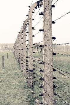 Auschwitz, Poland. This will be an experience we will never forget...