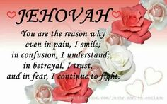 Jehovah Is The Reason! Jw Bible, Bible Truth, Jw Songs, Jw Memes, Spiritual Thoughts, Postive Thoughts, Christian Humor, Everlasting Life, Bible Encouragement