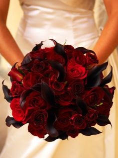 Gorgeos deep red roses and wine colored calla lillies. Very gothic.