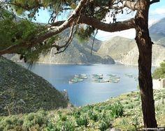 Αποτέλεσμα εικόνας για μονάδα χερσαίας ιχθυοκαλλιέργειας River, Outdoor, Outdoors, Outdoor Games, The Great Outdoors, Rivers