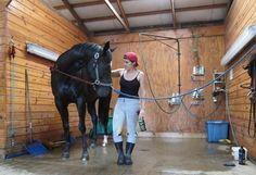 Shower stall idea for farm animals.