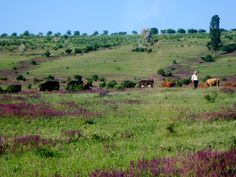 It is just SO beautiful!!! Moldova Countryside