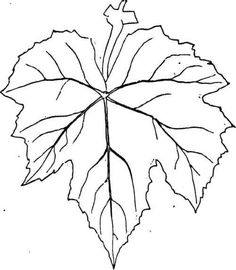 grape leaf template printable - Google Search                                                                                                                                                                                 More