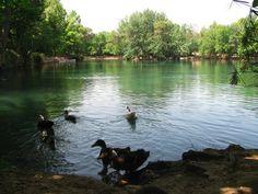 Lago de Anna, la Albufera