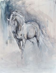 White_Andalusian.jpg (425×550)