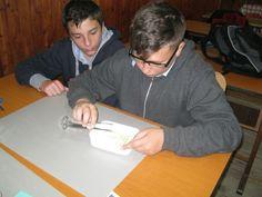 Hydrogel experiment in progress at Scoala Gimnaziala 4 Fratii Popeea, Romania.
