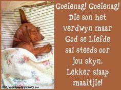 Lekker slaap maaitjie! Dog Quotes, Qoutes, Goeie Nag, Afrikaans Quotes, Good Morning Good Night, Special Quotes, Day Wishes, Spiritual Inspiration, Christmas Wishes