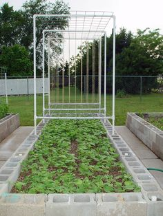 Concrete block raised bed with PVC trellises -- how this gardener made and installed the trellises