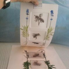 We three #bees love lavender. Will the plants survive for more prints? #printmaking | by LBPrintmaker