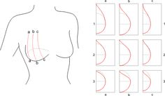 Bra Cup Pattern Tutorial « Pattern School