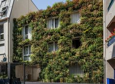 anonyme studio fully covers a parisian building façade with plants