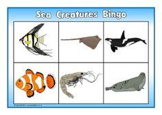 BINGO @ http://www.sparklebox.co.uk/topic/living/ocean-life.html#.VbNjuqRVhBf