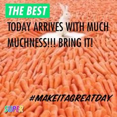 THE BEST Today arrives with much muchness!!! Bring it! #makeitagreatday