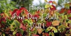Happy First Day of Fall quotes quote autumn fall autumn quotes fall quotes autumn quote happy autumn First Day Of Autumn, Autumn Day, Fall Images, Fall Pictures, Inspiring Pictures, Fall Is Here, Wishes Images, Happy Fall Y'all, Funny Animal Memes