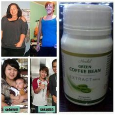 Agen Distributor Green Coffee Exitox