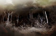 Forest by Yaroslav Gerzhedovich