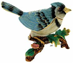 Trinket Boxes- Blue Jay