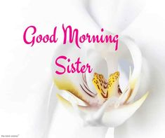 Looking for Good Morning Wishes for Sister? Start your day by sending these beautiful Images, Pictures, Quotes, Messages and Greetings to your Sis with Love. Good Morning Sister Images, Good Morning Meme, Morning Pictures, Good Morning Wishes, Prayers For Sister, Wishes For Sister, Love My Sister, Morning Noon And Night, Sister Cards