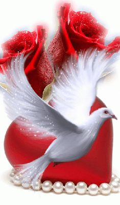 - Sore Tutorial and Ideas Dove Images, Dove Pictures, Love Heart Images, Love You Images, Rose Flower Wallpaper, Flowers Gif, Love Wallpaper, Beautiful Flowers Wallpapers, Beautiful Rose Flowers