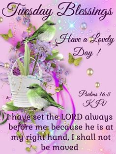 Tuesday Blessings~~J~ Psalms Tuesday Quotes Good Morning, Good Morning Sister, Happy Tuesday Quotes, Good Afternoon Quotes, Good Morning Friends Quotes, Happy Thursday, Saturday Morning, Happy Weekend, Monday Blessings