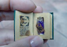 EV Miniatures Hidden Potion Books