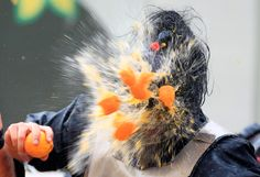A reveler is hit by an orange during the Carnival battle in Ivrea, Italy on February 19, 2012. Dressed up as Middle Age kings' guards, a group of men ride in a horse-drawn carriage and pelt 'foot soldiers' with oranges as thousands of people gather to re-enact a Middle Age battle when the townsfolk of Ivrea overthrew an evil king.