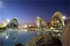 Oceanografico de Valencia Spain !! Enjoy magic moments with aquatic animals *_* booking@hivalencia.com