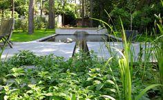 Best zwemvijvers natural swimming pools images