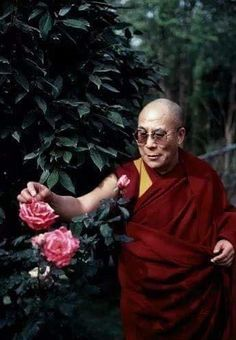 His Holiness is a gardener