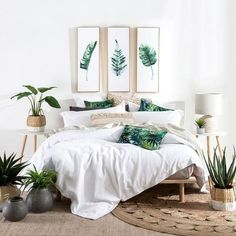 🌴 🌴 A crisp white quilt cover like the Sorrento Waffle paired with the vibrant tropical cushions, textured Amira cushion and statement Tropical Leaf wall art is all you need to create this awe-inspiring bedroom look! Tropical Bedroom Decor, Tropical Bedrooms, Boho Bedroom Decor, Bedroom Green, Tropical Decor, Tropical Furniture, Tropical Colors, Dispositions Chambre, Bedroom Layouts