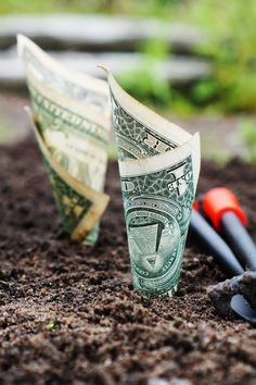 U.s Dollar Bills Pin Down on the Ground ==>>http://my-funnel-empire-review.com/