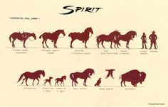 Spirit and Rain by Carlos Grangel Spirit The Horse, Spirit And Rain, Horse Drawings, Animal Drawings, Childhood Movies, Spirited Art, Disney And Dreamworks, Dreamworks Animation, Character Design References
