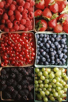 berries, grapes, cherries #fruit