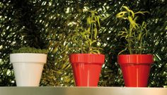 Vase Etto is the smallest planters / Pot in te Vase series by Serralunga. The Vase Plnaters are spun 100% recycable polyethylene plastic with UV protection, they features a High degree of mechanical strength.