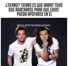 Read 031 from the story Memes de Y Larry. One Direction Harry, One Direction Humor, Louis And Harry, Niall And Harry, Larry Stylinson, Harry Styles Memes, Teen Wolf Memes, Larry Shippers, 1d And 5sos