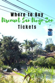 Where to buy discount San Diego Zoo Ticket Places In California, California Vacation, San Diego Zoo, San Diego Padres, Travel With Kids, Family Travel, Zoo Tickets, Visit Omaha, Family Vacation Destinations
