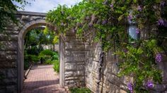 Flower Garden Stone Walkway with Vines Visit Landscape Photography, Nature Photography, Garden Express, Stone Walkway, 1080p Wallpaper, Wallpapers, Window View, Garden Stones, Nature Pictures