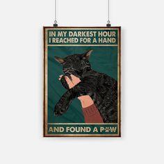 Crazy Cat Lady, Crazy Cats, Black Cat Art, Black Cats, Cat Posters, Cat Quotes, Cat Drawing, Cat Memes, Belle Photo