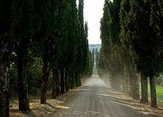 Villa Arceno, Castelnuovo Berardenga, raggiungibile dalla villa attraverso un viale di cipressi