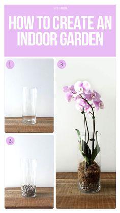 Tips for creating your own indoor garden.