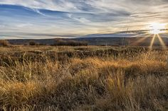 """ Late Afternoon on Malheur "". As the sun lowered and the shadows lengthened, I took three exposures on the grassy plains of Malheur National Wildlife Refuge in the fall. Water levels were low as the rainy season had not really started at this point. Copyrighted - Belinda Greb Available Sizes: 8x10, 11x14, 13x19, 16x24. I have chosen sizes that that tend to have standardized matting and framing options. If you would like custom or larger sizing, please contact me. Each print will be…"