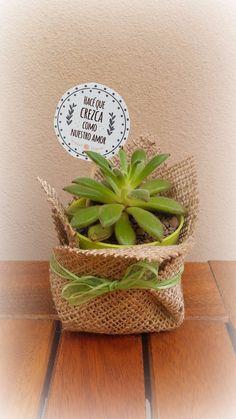 maceta n° ideal souvenirs o regalo! Mini Cactus, Cactus Wedding, Jw Gifts, Ideas Para Fiestas, Cactus Y Suculentas, Wedding Favours, Wedding Ideas, Succulents Garden, Diy And Crafts