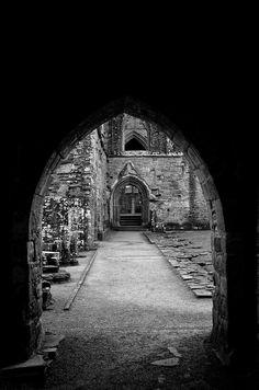 Tintern Abbey IV, Monmouthshire