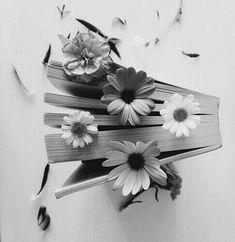 Quotes book photography 60 ideas for 2019 Book Aesthetic, Flower Aesthetic, Aesthetic Photo, Aesthetic Pictures, Daisy Wallpaper, Book Wallpaper, Sunflower Wallpaper, Ebooks Gratis, Calming Images