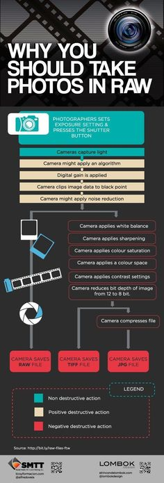 28+Photography+Infographics+That+Will+Make+You+a+Master+Photographer+(in+No+Time)