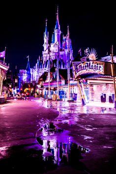 Disney in the rain Disney World 2017, Disney World Wedding, Disney World Vacation, Disney Vacations, Disney Parks, Disney Resorts, Disney Bound, Disney Time, Disney Magic